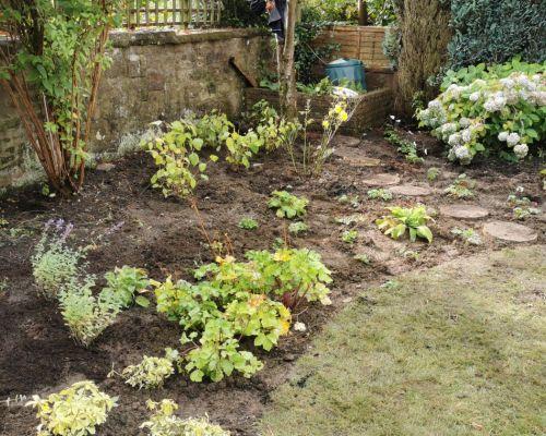 Planting plan Edinburgh-2019
