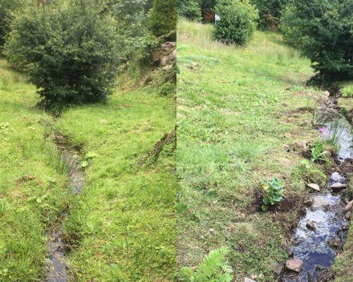 Planting plan Glasgow-2017